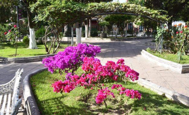 Continúan los trabajos de rehabilitación de las áreas verdes del jardín principal Rafael Páez